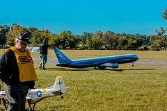 volando en otoño 2014 006