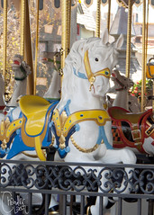 Carrousel Horse (dapperchandler) Tags: disneyland disney fantasyland carrousel disneylandresort disneylandride disneyattraction kingarthurscarrousel disneylandattraction disneyride