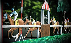 Saratoga Scenes (EASY GOER) Tags: summer vacation horses horse ny newyork sports beauty race canon athletics track saratoga competition upstate running racing course event 5d ponies athletes tradition races sporting spa thoroughbred equine exciting thoroughbreds markiii