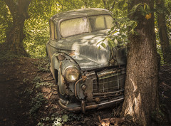 I tried... I really tried.. (marco18678) Tags: nikon d7100 sigma 1835 car old oldtimer decay decayed abandoned hidden photography pixanpictures world europe germany technology urbex urban ue urbanexploring amazing forgotten lost natural naturallight beautiful woods tree trees rusted ruined parking