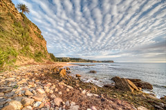Step through the weed (JustAddVignette) Tags: australia beach clouds dawn early landscapes newsouthwales newport ocean rockpool rocks seascape seawater seaweed sky sydney water