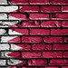 National Flag of Bahrain on Brick Wall
