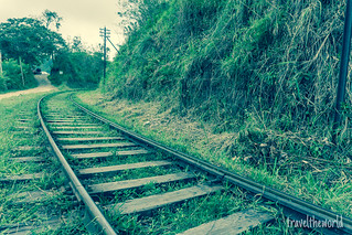 Rail tren