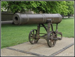 Russian Cannon Captured during the Crimean War (Alan B Thompson) Tags: picasa olympus ely 2013 sp590uz