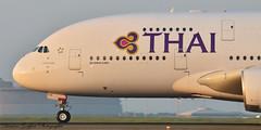 Airbus A380-841 MSN87 HS-TUA Thai Airways (Goepfert Damien) Tags: paris airplane airport damien landing airbus avion cdg thaiairways aéroport a380841 goepfert msn87 hstua damiengoepfert