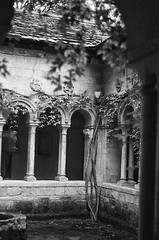 (inmost_light) Tags: england blackandwhite film mysterious haunting englishgarden petogarden