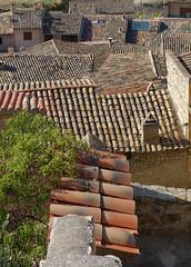 GUIMER - TEJADOS (beagle34) Tags: 116 lleida espanya urgell guimer sonyrx100