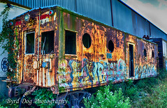 Abandoned Train (byrdgirl50) Tags: train graffiti rust pennsylvania trains buckscounty quakertown abandonedtrain graffititrain quakertownpa