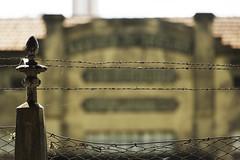 BOYES (ivan moretti) Tags: cidade arquitetura industria seda fabrica abandono piracicaba tecido textil boyes arethusina