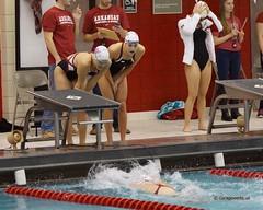 University of Arkansas vs Nebraska State University Swimming (Garagewerks) Tags: woman college ex sport female swimming nebraska university state sony sigma os apo arkansas f28 dg a77 70200mm hsm views200 views400