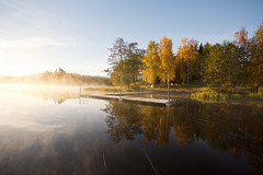 golden mist III (Andreas Hagman) Tags: autumn trees mist lake colour fall reed nature water reflections landscape sweden earlymorning nopeople birch scandinavia uwa sigma1020mm calmwater stergtland lakescape woodenjetty nordics bjrster sonyalphaslta77 hvern vision:mountain=0688 vision:outdoor=0963 vision:sky=0973 vision:clouds=0578