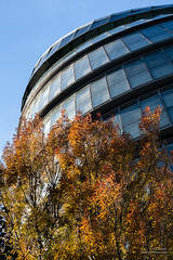 Autumn II (cybertect) Tags: autumn building tree london leaves architecture cityhall normanfoster cy se1 glabuilding londonse1 fosterpartners canoneos5d carlzeisssonnart85mmf28