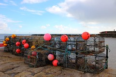 Lobster Pots & Buoys at Lyme Regis (Xmural) Tags: buoyant
