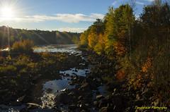 Early Fall Morning on the Saco (Tangled Web Photography) Tags: nikon buxton maine newengland fallfoliage sacoriver danjordan d5100 tangledwebphotography
