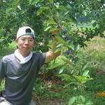 須田農園風景9