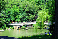 Bow Bridge (punahou77) Tags: park nyc newyorkcity bridge trees newyork water centralpark