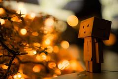 Danbo enjoyed light decoration in Minatomirai, Kanagawa (Takashi(aes256)) Tags: light japan night evening bokeh illumination yokohama kanagawa 夜景 minatomirai 横浜 光 神奈川 夜 danbo みなとみらい イルミネーション ボケ kanagawaprefecture lightdecoration ダンボー nikond5200 sigma1835mmf18dchsm
