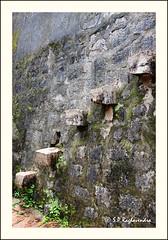 Manjarabad Fort (sp raghav) Tags: canon fort steps canon500d tippusultan efs1022mmf3545 manjarabadfort