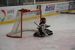 FASS_BAM_250114_0016inet (Cornerbreaker Pictures) Tags: berlin bambini mk2 halle nord saison eishockey fass esv odm kleinstschler 20132014