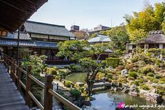 Tji-in -  (Voyage  Kyoto) Tags: japan temple kyoto jardin   shogun paysage kansai  vue japon  tang  tranquille tenryu shoin   rinzai paisible bouddhiste  tojiin     tji crmonieduth ashikagatakauji   familleashikaga     msosseki hjo