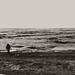 Frozen Sea Photographer