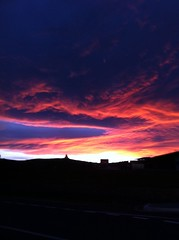 arboretum sunset (Seakayem) Tags: sunset red sky orange cloud silhouette purple cellphone arboretum canberra iphone