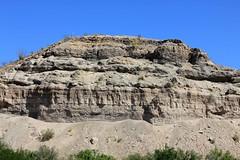 IMG_0171.jpg (DrPKHouse) Tags: arizona unitedstates loco bullhead ehrenberg