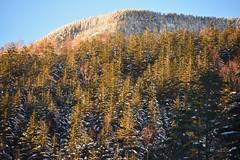 八ヶ岳(やつがたけ)-20170202_165214-LR (HYLA 2009) Tags: 八ヶ岳 alpineclimbing japan taiwan yhhsu yatsugatake mountain snow やつがたけ アイス アルプス クライミング 冬山 山 爬山 登山 許永暉攝影 雪地