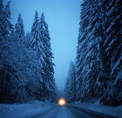 (Zeb Andrews) Tags: hasselblad film mediumformat 6x6 oregon forest snow winter twilight bluehour kodakektar100 hwy26 pacificnorthwest landscape hasselblad500c blue colorfilm filmphotography