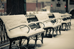 Snow Storm and Empty Benches in Seattle (Hal Bergman Photography) Tags: seattle park city winter urban usa white snow storm weather horizontal snowflakes washington crossprocessed downtown quiet empty snowstorm nobody courtyard calm photograph wa daytime desaturated benches untouched desolate shallowfocus focusonforeground