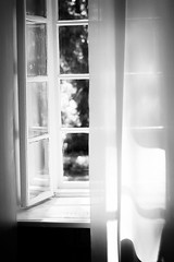 Irina (Farmuty) Tags: portrait window girl blackwhite windowblinds blackwhitephotos