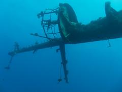 Red Sea Diving 2010 (Dennis Bevers) Tags: underwater redsea egypt shipwreck crowsnest mast eg salemexpress redseagovernate