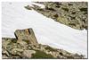 _JRR2793 (JR Regaldie Photo) Tags: mountain snow rocks nieve lagunas sierrademadrid peñalara jrregaldiephoto