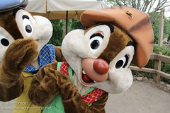 Meeting Gold Prospectors Chip and Dale!
