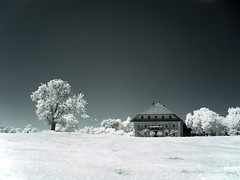 Farmhouse - infrared (Himbeerdoni) Tags: bw white house black germany landscape ir bayern bavaria countryside blackwhite farm wiese infrared sw landschaft chiemsee schwarz bauernhof f717 hoya rosenheim breitbrunn bauernhaus r72 infrarot weis chiemgau nd8 ir72