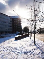 Aarhus kommunehospital
