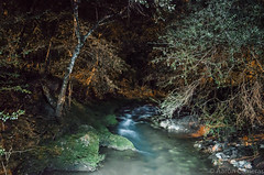 Fluir Nocturno (Aaron Cameras) Tags: longexposure nightphotography naturaleza nature beauty 30 night river mexico outdoors noche nikon exposure bosque slowshutter amateur eco chiapas ecoturismo lightroom flickrexplore digitalrev thegalleryoffinephotography d5100 froknowsphoto fronation