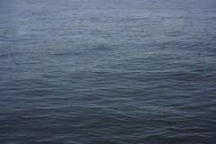 DSC08864.jpg (ntstnori) Tags: sea 35mm tokyo sony surface  f18 tokyobay koto lalaport toyosu     e35mmf18oss