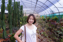 Cactus (Taipei street life) Tags: trip travel portrait holiday charlotte taiwan 台灣 新竹縣 hsinchucity 新埔鎮