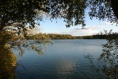 Villeneuve d'Ascq, lac du Hron (Ytierny) Tags: france nature horizontal lac arbre nord branche flandre villeneuvedascq espacevert plandeau parcurbain basenautique lacduhron mtropolelilloise ytierny