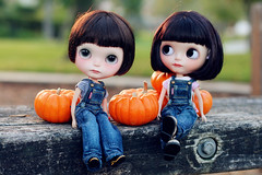 Sol went for Pumpkin Patch with her friends