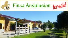 Finca, Gestt, Reiterhof, Reitstall, yeguada, studfarm, riding centre Andalusien, Costa de la Luz, Vejer, zu verkaufen, for sale (SPANIEN-Reit-Immobilien-Fincas-Villen-Haciendas) Tags: ranch horse casa spain forsale realestate country property andalucia espana cadiz andalusia turismo andalusien equestrian inmobiliaria spanien finca costadelaluz studfarm casarural cuadra horsefarm vejer zuverkaufen horsestable enventa immobilien yeguada centrohipico ridingschool decampo reitstall reiterhof turismus pferdehof gestt pferdebetrieb reitimmobilie cercadelaplaya nearbybeach fincarustica wohnenmitpferden propiedadecuestre workingstables