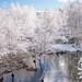 Neve no Parque Natural do Alvão-8