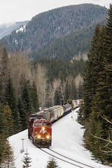 CP 463 @ Fabro, BC (Mathieu Tremblay) Tags: winter snow canada mountains electric rockies pacific general britishcolumbia hiver rocky canadian neige cp cranbrook ge rocheuses canadien montagnes subdivision manifest sparwood pacifique 8922 es44ac