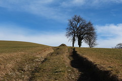 Oberdambach - Upper Austria (Been Around) Tags: winter austria sterreich europa europe niceshot eu february o