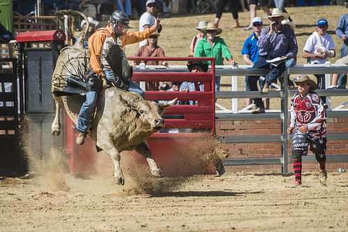 14-02-08_Cooma_Rodeo_1187a by Fat Boy Foto, on Flickr