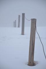Fog (vultures art) Tags: mountains fog poles tatra