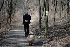 Path at Kahlenberg (Leolibroslargos) Tags: vienna wien autumn trees dog tree dogs forest way walking austria countryside path walk oldman perro paseo bosque viena signal viejo marked kahlenberg