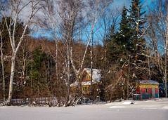 """Patiently Awaiting Summer - Part 1"" - A colorful Muskoka cottage in winter (Jeff Haltrecht) Tags: trees winter snow nature forest outdoors cottage canadian muskoka forests"