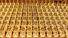 Golden Buddhas (Johnnie Shene Photography(Thanks, 2Million+ Views)) Tags: golden buddha buddhas buddhism buddhist religious religion gold bongeunsa bongeun temple stunning fabulous gorgeous photography horizontal indoor colourimage fragility freshness nopeople foregroundfocus adjustment fulllength stockphoto tranquility artificial manmade cute group bunch packet frontview interesting awe wonder asia asian korea korean oriental travel destination landmark local attraction sculpture small statue engraving canon eos600d rebelt3i kissx5 sigma 1770mm f284 dc macro lens 부처 붓다 부처상 동상 봉은사 서울 한국